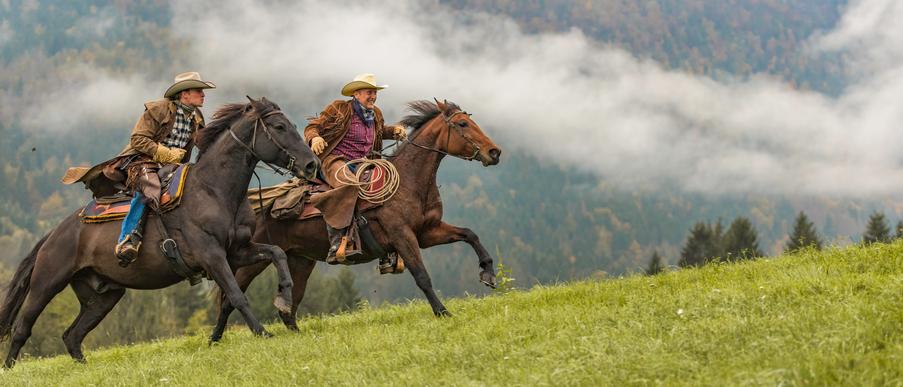 Suomenhevonen on maamme ainoa hevosrotu